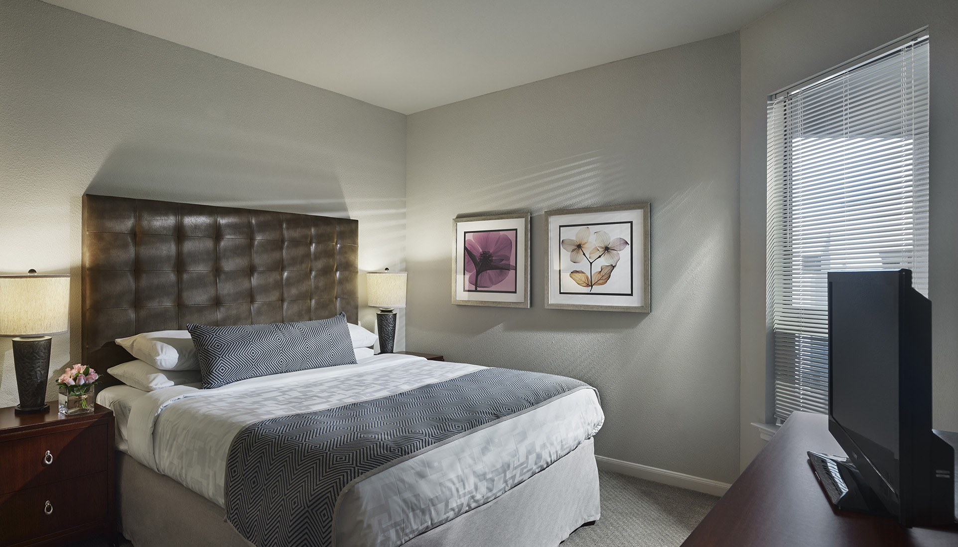 AVE Clifton furnished bed room with natural sunlight